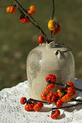 Moonshine Jug And Pumpkin On A Stick Poster by Kathy Clark