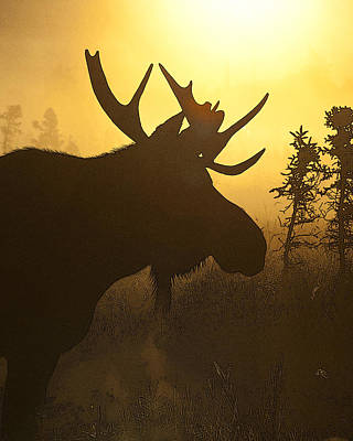 Moose In Mist- Abstract Poster