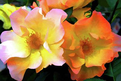 Morning Roses Poster