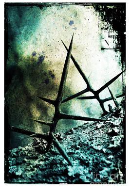 Mortal Combat Poster by Judi Bagwell