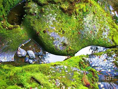 Poster featuring the photograph Mossy Rocks And Water Reflections by Michele Penner