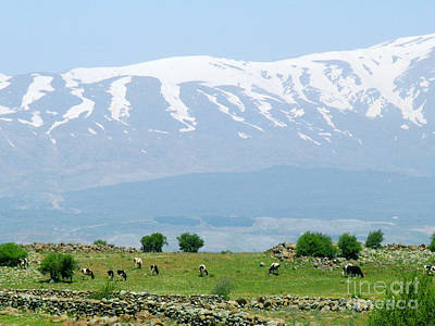 Mount Hermon Poster by Issam Hajjar