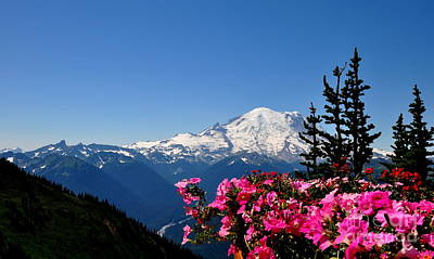 Mount Rainier Seen From Crystal Mountain Summit  2 Poster by Tanya  Searcy