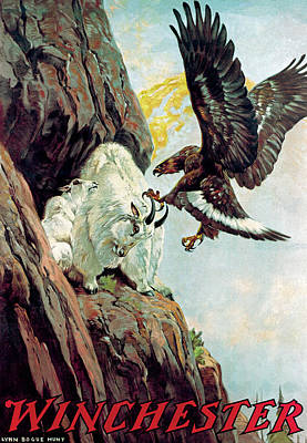Mountain Goat And Eagle Poster by Lynn Bogue Hunt