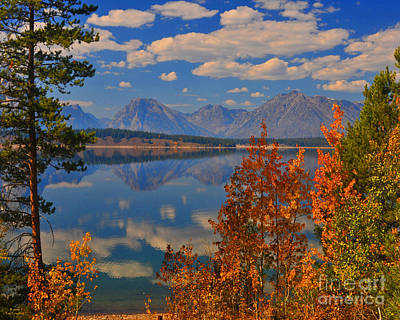 Mountain Reflections In Autumn Grand Tetons Poster