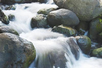 Mountain Stream Kauai Poster by Michael Peychich