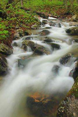 Mountain Stream On The Appalachian Trail Green Mountains Poster