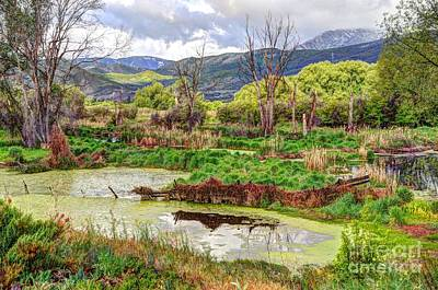 Mountain Valley Marsh - Hdr Poster by Gary Whitton