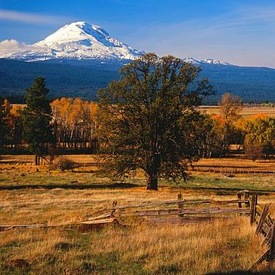 Mt. Adams Autumn Poster by Todd Kreuter