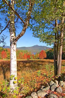 Mt. Chocorua Autumn Vertical Poster by Larry Landolfi