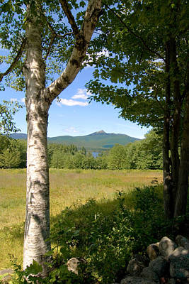 Mt. Chocorua Summer Vertical Poster