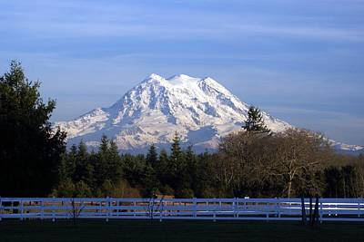 Poster featuring the photograph Mt. Rainier Fenced In by Rob Green