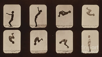 Muybridge Locomotion, Back Somersault Poster