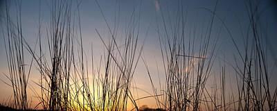 Nachusa Grasslands Sunset Poster by Steve Gadomski