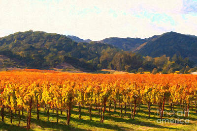 Napa Valley Vineyard In Autumn Colors Poster by Wingsdomain Art and Photography