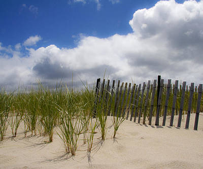 Poster featuring the photograph Nauset Dune by Michael Friedman
