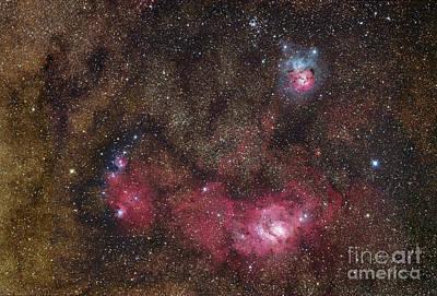 Nebulosity In Sagittarius Poster by Robert Gendler