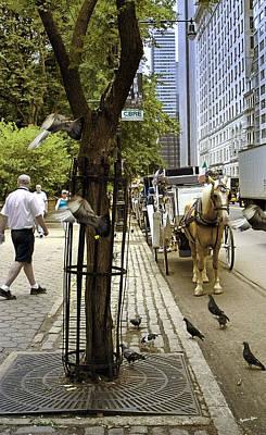 New York City - Street Scene 2 Poster