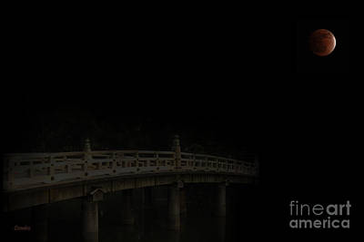 Night Wonders Poster