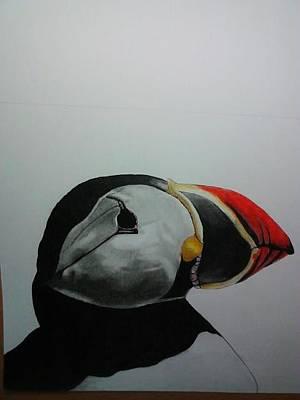 Nordic Birds Poster by Per-erik Sjogren