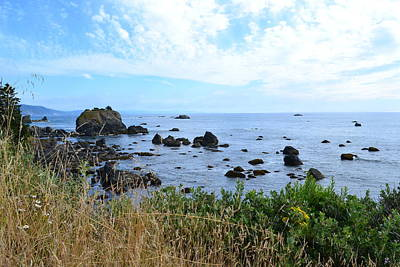 Poster featuring the photograph Northern California Coast2 by Zawhaus Photography