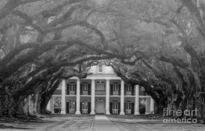 Oak Alley Plantation Louisiana Poster by Kathleen K Parker