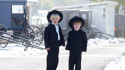 Oh So Cute Amish Boys Poster by Jeanette Oberholtzer