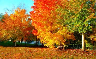 Poster featuring the photograph Ohio Autumn Maples by Dennis Lundell