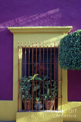 Poster featuring the photograph Old Mazatlan Window by John  Mitchell