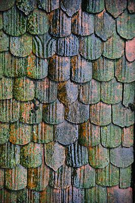 Old Roof Tiles Poster by Jen Morrison