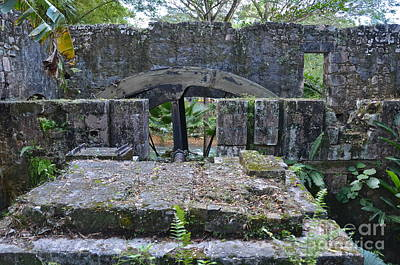 Old Sugar Mill Water Wheel Ruins Poster