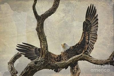 On Wings High Poster by Deborah Benoit