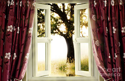 Open Window To Tree Poster by Simon Bratt Photography LRPS