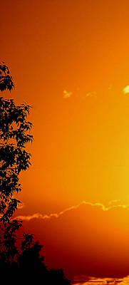 Orange Silhouette Poster