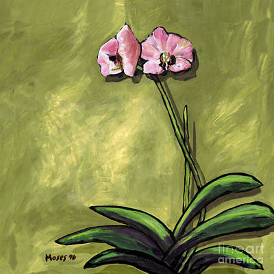 Orchid On Olive Poster