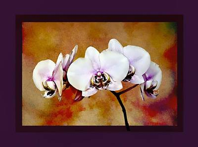 Poster featuring the painting Orchids by Mary Morawska