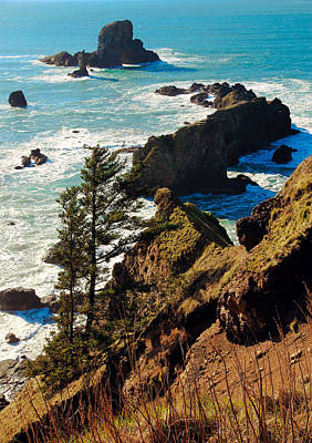 Poster featuring the photograph Oregon Coast by Athena Mckinzie