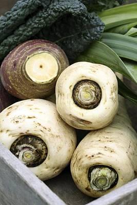 Organic Winter Vegetables Poster