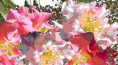 Original Fine Art Digital Camelias 1c Poster