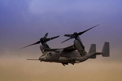 Osprey In Flight I Poster