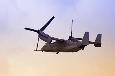 Osprey In Flight Iv Poster