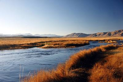 Owens River Poster