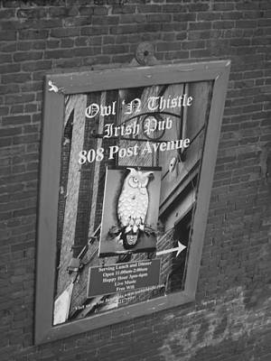 Owl And Thistle Irish Pub Poster