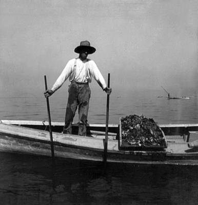 Oyster Fishing On The Chesapeake Bay - Maryland - C 1905 Poster by International  Images