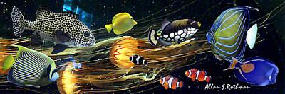 Pacific Coast Fish Poster