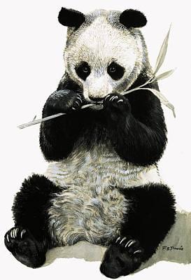 Panda Poster by R B Davis