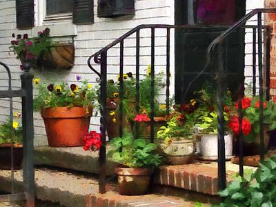 Pansies And Geraniums On Stoop Poster by Susan Savad