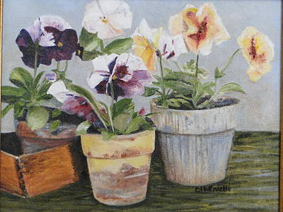 Poster featuring the painting Pansies by Cindy Plutnicki