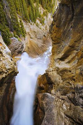 Panther Falls, Banff National Park Poster