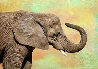 Pastel Elephant Poster